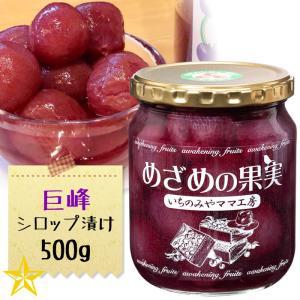 コンポート ぶどう 巨峰 山梨県産 葡萄シロップ漬け つぶつぶ巨峰 大 500g 単品|shopvision