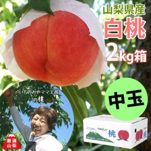 もも 白桃 白鳳 山梨県産 送料無料 朝取 新鮮 農家直送 いちのみやママ工房の桃 中玉 2kg箱 (6〜8玉)|shopvision