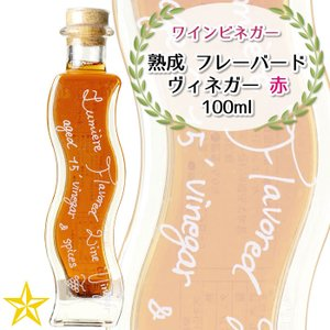 飲むお酢 ワインビネガー ドリンクビネガー ルミエール 熟成 フレーバードヴィネガー 赤 100ml 1本 shopvision