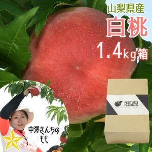 もも 山梨県産 送料無料 朝取 新鮮 農家直送 大玉 桃 1.4kg箱 (4〜5玉) 中澤さんの桃|shopvision