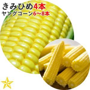 とうもろこし 山梨県 農家直送 きみひめ 4本 ヤングコーン 6〜8本 セット 最大糖度19度 生で食べられる|shopvision