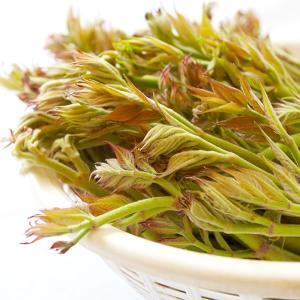 山菜 たらの芽 200g 朝取り 天然 鮮度抜群の山梨のタラの芽 武井農場|shopvision