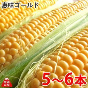 とうもろこし 恵味ゴールド (めぐみゴールド) 山梨県 農家直送 5〜6本入り|shopvision