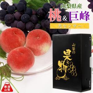 もも ぶどう 山梨県一宮産 送料無料 生産者直送 お中元 光センサー 桃と種無し巨峰 贅沢セット|shopvision