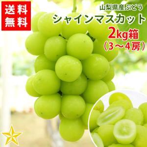 ぶどう シャインマスカット 山梨県産 送料無料 農家直送 大人気品種 シャインマスカット2kg箱 (3〜4房)|shopvision