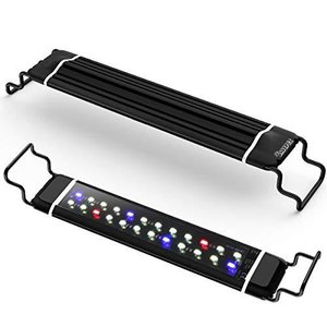 DADYPET 水槽ライト アクアリウムライト 30CM 45CM 60CM 水槽対応 三色白/赤/青LED 調節可能 防水仕様 水槽照明 観賞魚飼育|shopwin-win
