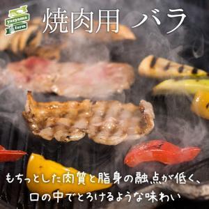 ★パインを食べて育ったアグー豚 F1種★沖縄 石垣島 高級 焼肉 豚肉 バラ 500g ギフト 贈り...