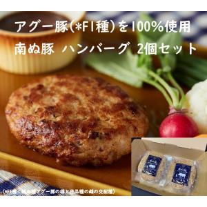 南ぬ豚 ハンバーグ 2個セット 国産 沖縄 希少 贅沢 旨み  極上 ジューシー こだわり 逸品 贈...