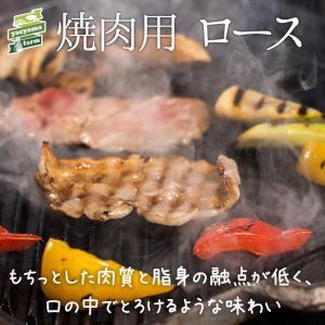 ★パインを食べて育ったアグー豚 F1種★沖縄 石垣島 高級 焼肉 豚肉 ロース 500g ギフト 贈...
