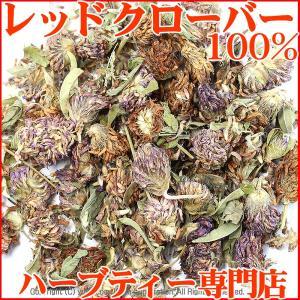レッドクローバーティー 100g (ゆうメール送料無料)|shopyuwn