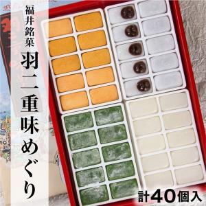 福井銘菓 羽二重味めぐり 40個入り(白(餡入)+白+よもぎ+きなこ各10個)