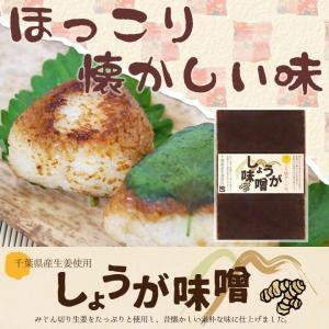 生姜味噌 エコパック140g 1袋   国産生姜を使用 しょうがみそ|shougakoubou