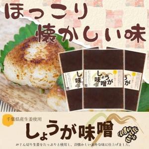 生姜味噌 エコパック140g 3袋 国産生姜を使用 しょうがみそ DM便送料無料|shougakoubou
