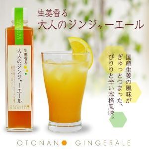 生姜香る大人のジンジャーエール 1本 370g|shougakoubou