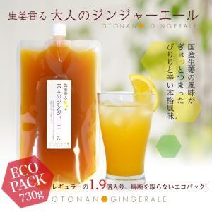 セール用・生姜香る大人のジンジャーエール(730g)エコパック(原液)クリックポスト送料無料 ポイント消化 お試し 食品|shougakoubou