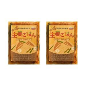 生姜ごはんの素 2合用 2袋セット ゆうパケット送料無料[生姜ご飯 しょうがご飯 炊き込みご飯] 【ちば県産品】 shougakoubou