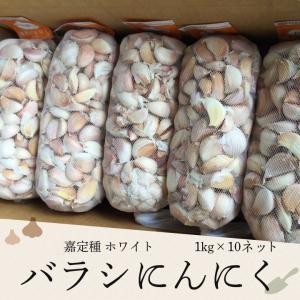 バラシにんにく 1kg×10ネット 中国産 上海嘉定種(ホワイト)|shougakoubou