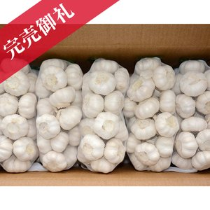 にんにく種球 1kg×10ネット 中国産 上海嘉定種(ホワイト)|shougakoubou