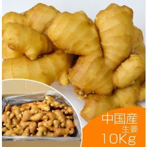 【青果】食用 中国産 黄金生姜 近江生姜 黄 10kg
