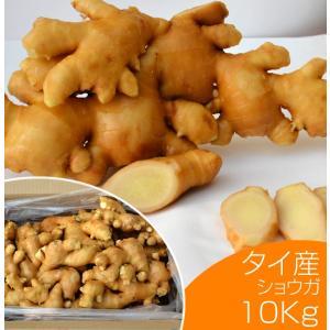 生鮮生姜 タイ産ほほえみショウガ 10kg(近江生姜 白)野菜 いかなごのくぎ煮 はつがつお