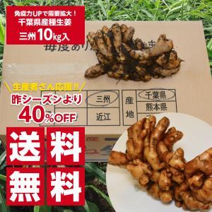 【種生姜】千葉県産 三州生姜 10kg shougakoubou