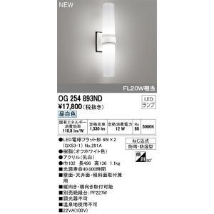OG254893ND オーデリック 照明器具 エクステリアライト ODELIC shoumei