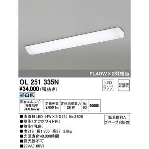 OL251335N オーデリック 照明器具 キッチンライト ODELIC_送料区分20 shoumei
