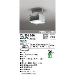 XL501046 ベースライト オーデリック(ODELIC) 照明器具|shoumei