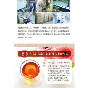 訳あり ピーチ 紅茶 茶 特価 セール プレゼント フレーバー ティー 桃 ダイエット 糖質0 ノンカロリー カロリーゼロ 健康茶 健康  つぶれあり|showa-direct|11