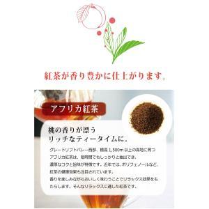 訳あり ピーチ 紅茶 茶 特価 セール プレゼント フレーバー ティー 桃 ダイエット 糖質0 ノンカロリー カロリーゼロ 健康茶 健康  つぶれあり|showa-direct|05