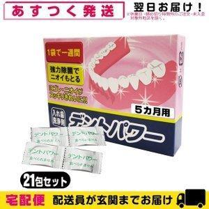 義歯洗浄剤 デントパワー(DENT POWER) 5ヵ月用 「当日出荷」