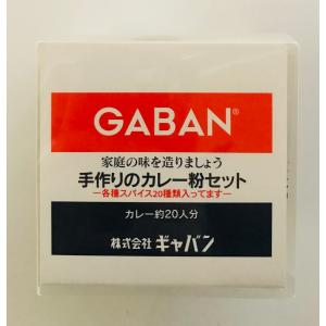 GABAN 手作りカレー粉セット 100g 業務用 ギャバン