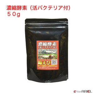 濃縮酵素(活バクテリア付) 50g|shrimpariel