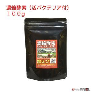 濃縮酵素(活バクテリア付) 100g|shrimpariel