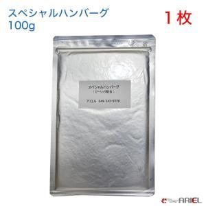 【クール便】スペシャルハンバーグ(ガーリック入り) 100g 1枚 shrimpariel