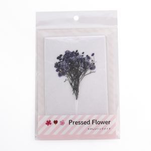 APLUS 押し花パック かすみ草枝付 バイオレット   おしばな カスミソウ 紫 小花 枝 アプラス pressed flower ハンドメイドの画像
