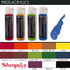 粘土 用具 絵具 アクリル絵具 プロスアクリックス パジコ|shugale1