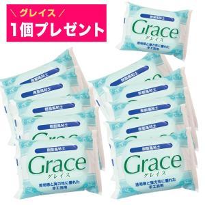 粘土 樹脂粘土 樹脂風粘土 グレイスパック グレイス11個入り | ミニチュアフード 樹脂粘土でつくるミニチュアフード|期間限定SALE ||shugale1