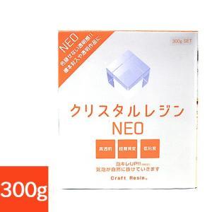 粘土 用具 型取り・注型材料 クリスタルレジン NEO 300gセット|shugale1