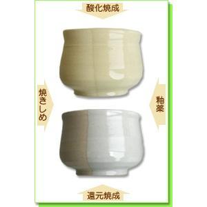 陶芸 粘土 美濃志野土 20kg|shugale1