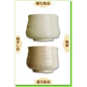 陶芸 粘土 信楽粘土 水簸 20kg|shugale1