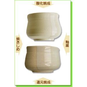 陶芸 粘土 信楽粘土 特漉 20kg|shugale1