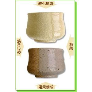 陶芸 粘土 信楽ロット土 20kg|shugale1