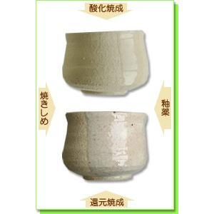 陶芸 粘土 土鍋土B 白 20kg|shugale1