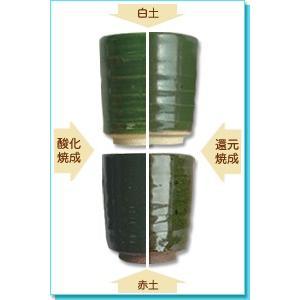 陶芸 釉薬 グリーン系銅入織部釉 F-8 shugale1