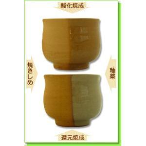 陶芸 粘土 多治見土 赤 15kg|shugale1
