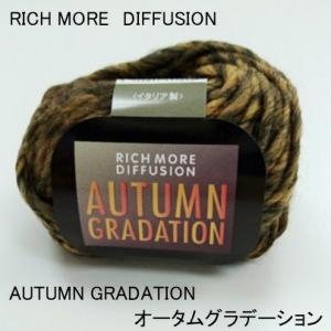【50%OFF】 毛糸/手編糸 【RICH MORE DIFFUSION】 リッチモア オータムグラデーション(イタリア製)
