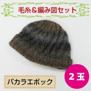 着分セット バカラエポックで編む帽子 (毛糸+編図)|shugeinohaguruma