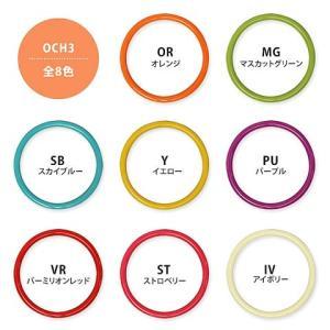 カラフル 持ち手 プラハンドルプラス (W16×H14cm)|shugeiya