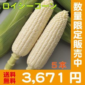 【予約中】しろいあま〜い450gの特大とうもろこしロイシーコーン2L 5本【送料無料】北海道産朝収穫即日発送 shun-choku